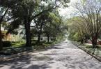 Hyde Park residential street