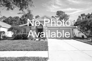 Pool Home in Seminole Heights