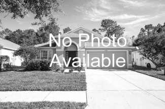 Pool Home in Seminole Heights